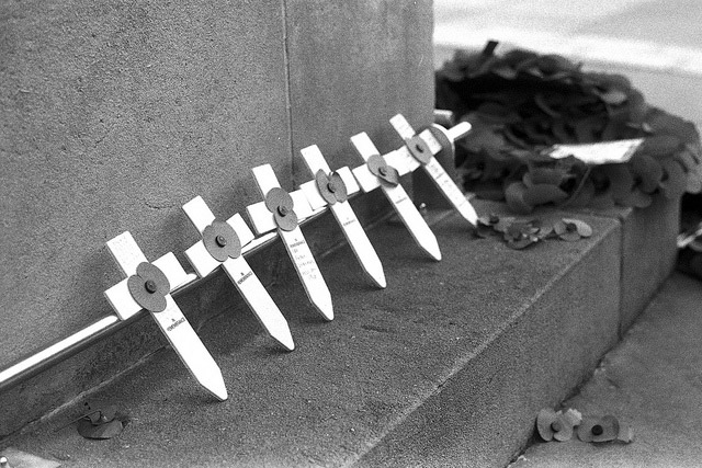 Line of crosses on the Cenotaph